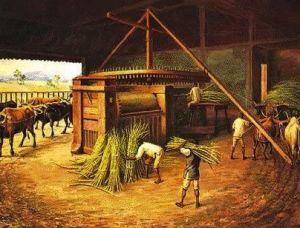 Ilustração de escravos trabalhando em um engenho. | Imagem: Reprodução