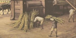 Atividades econômicas no Brasil colonial